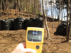 Itate village has one of the highest radiation level in Fukushima.