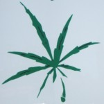 marijuanaleaffront