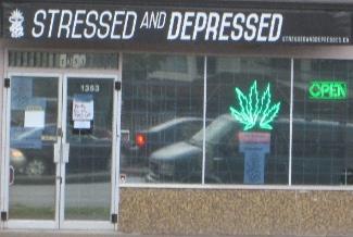 marijuanastore3