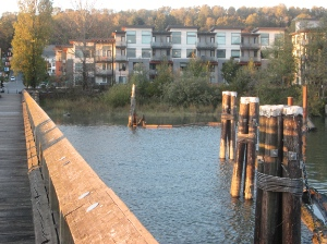 Thousands of condos are being built along the Fraser River.