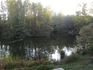 The natural pond and marsh area was added in 1999.