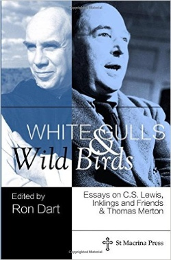 whitegullsandbildbirds1