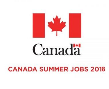 Image result for summer jobs
